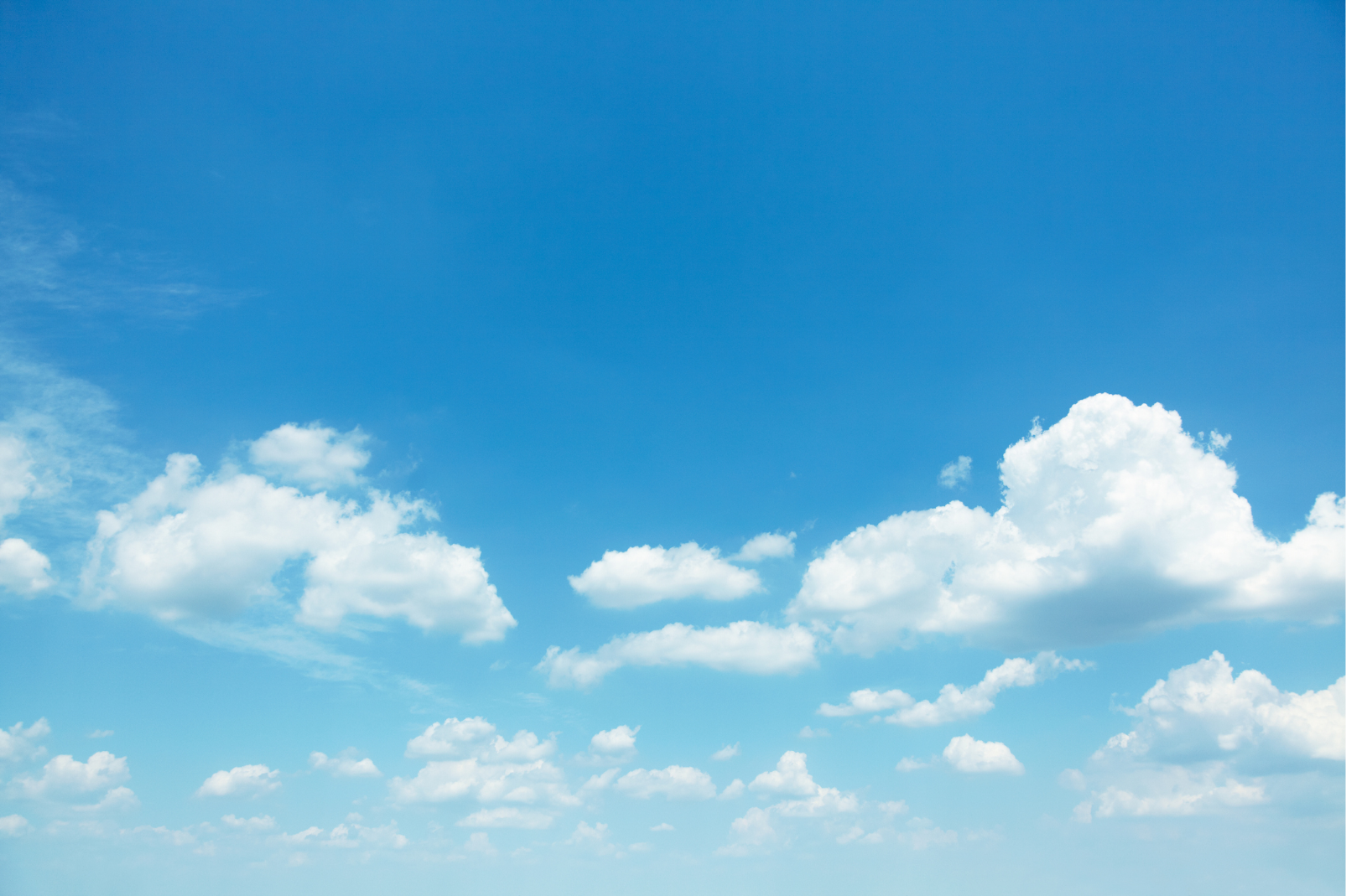Your Government background image